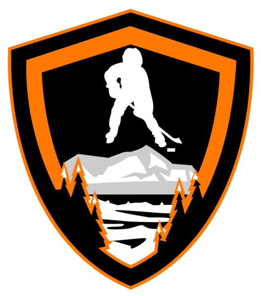 Ligue AURA Hockey Sur Glace